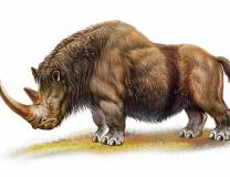 5 Most Lethal Predators Of Ice Age