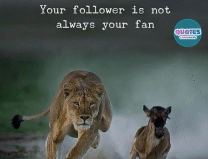 Best and awesome pictures with an interesting and true fact you should never miss
