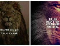 Keep these in mind to have an attitude like a king